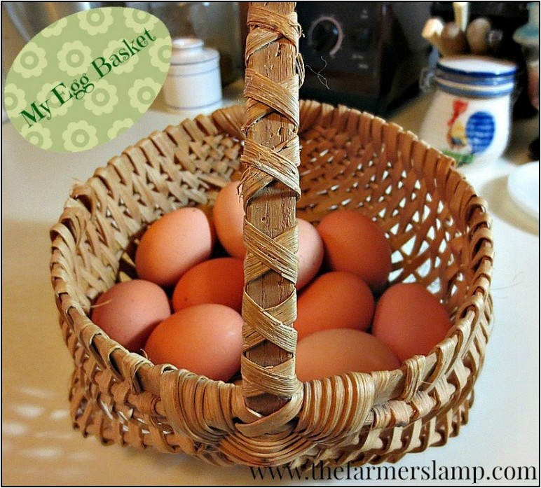 Do Fresh Eggs Need To Be Refrigerated Right Away