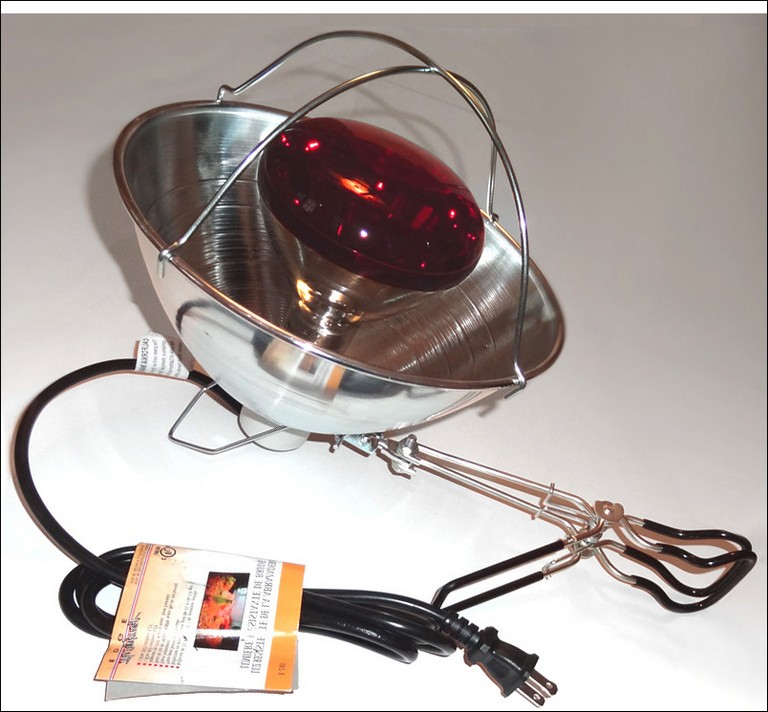 What Does A Heat Lamp Look Like