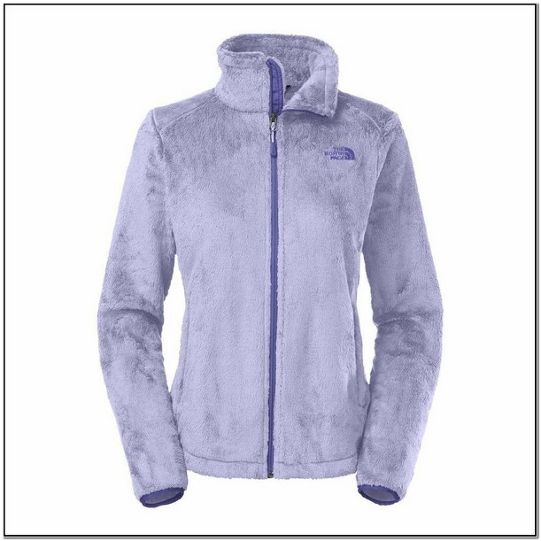 North Face Osito 2 Fleece Jacket Womens Sale