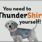 Thunder Jacket For Dogs Commercial