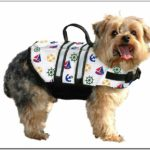 Where To Buy Life Jackets For Dogs